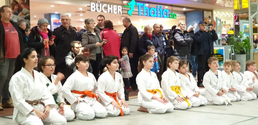 Karate. Foto: Sascha von Gerishem