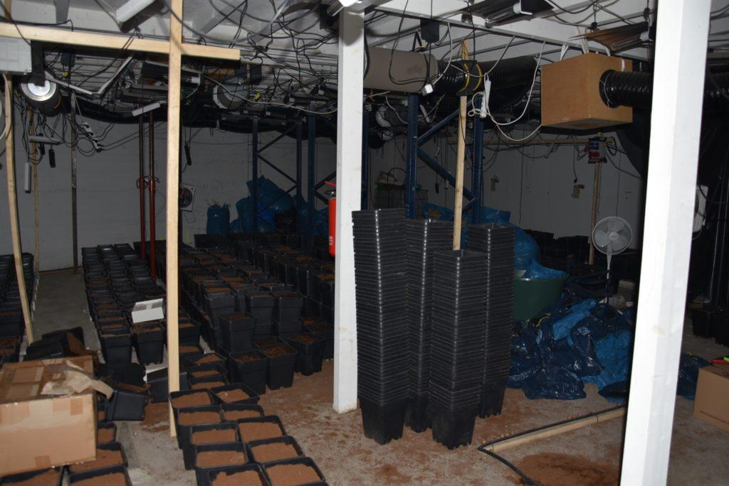 Die Marihuanaplantage in Wuppertal-Barmen war bereits vollständig abgeerntet. Foto: Polizei Wuppertal