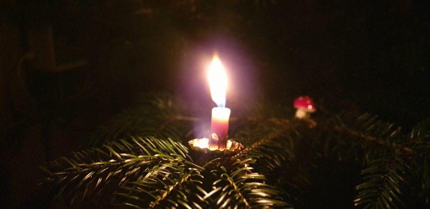 Der Weihnachtsbaum spendet Licht und Wärme. Foto: Sascha von Gerishem