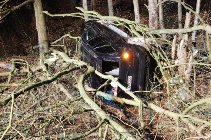 Ein Baum stoppte den BMW. Foto: Polizei