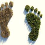 Ökologischer Fußabdruck. Symbolbild: Colin Behrens