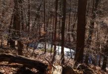 Schön anzuschauen ist die Natur um Remscheid zu jeder Jahreszeit. Foto: Sascha von Gerishem