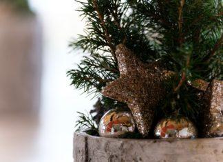 Muss es direkt ein ganzer Tannenbaum sein? Einzelne Zweige genügen für eine weihnachtliche Stimmung.