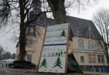 Die Weihnachtsbäume auf dem Platz neben dem Lütterkuser Rathaus wurden frisch gefällt - aber nicht misshandelt. Foto: Sascha von Gerishem