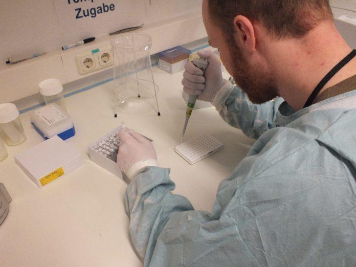 Ein Laborant untersucht Proben des Corona-Virus. Foto: Presse- und Informationszentrum Sanitätsdienst / Simon Höpfl