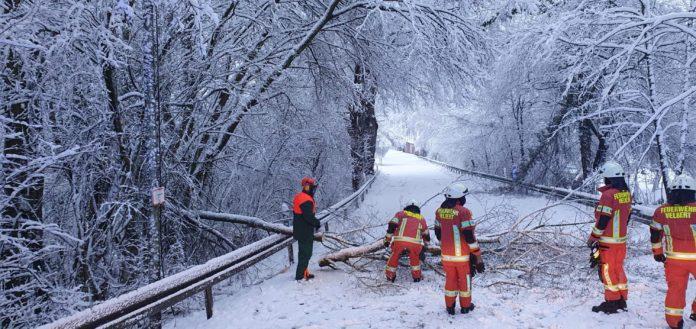 Im Hefel mussten gleich mehrere Bäume beseitigt werden. Foto: Feuerwehr Velbert