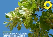 Sharepic der Grünen Remscheid.