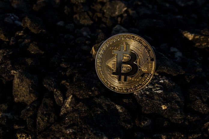 Mittlerweile gibt es viele verschiedene Kryptowährungen, nicht nur den Bitcoin. Polkadot ist noch recht neu am Markt, besitzt aber eine positive Prognose. Grafik: WorldSpectrum