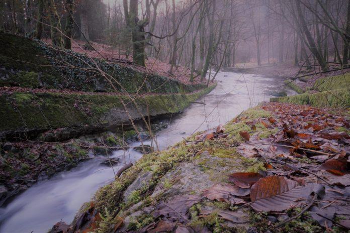 Burscheid ist ein schönes Ziel zum Wandern und Radwandern. Foto: Andreas Hundt