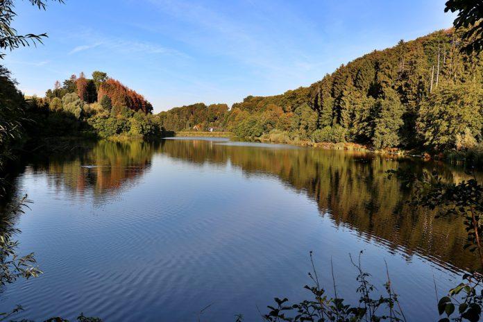 Bergisches Land: Stausee der Diepentaler Talsperre.