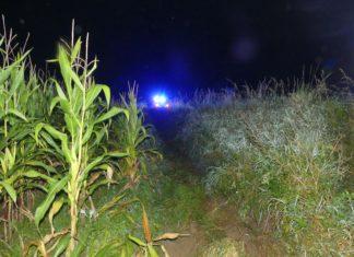 Ein Schwelmer landete bei Vogelshaus schwerverletzt in einem Maisfeld. Foto: Polizei OberBerg
