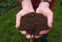 Die Verwendung von Qualitätskompost ist Bodenpflege und Umweltschutz zugleich, denn Kompost ist ein natürliches, biologisches Recyclingprodukt.